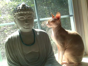Buddha and Boo